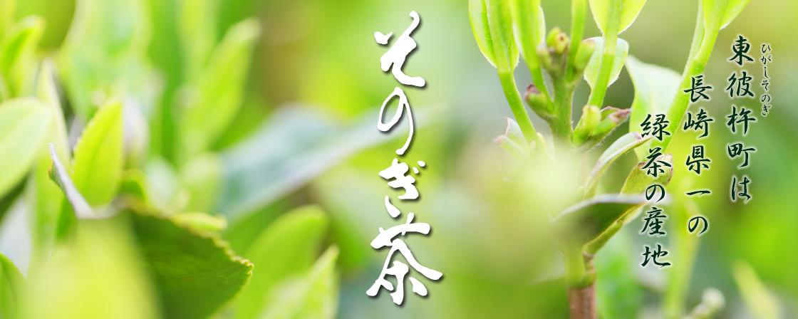 東彼杵町は玉緑茶の産地です。